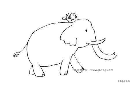 可爱的动物简笔画 大象