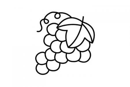 10张简单好画的水果简笔画图片