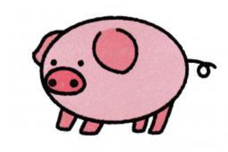 猪的简笔画画法
