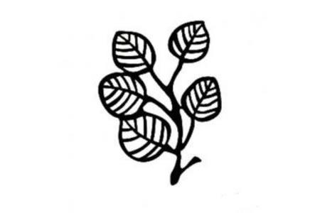 各种形状树叶的简笔画