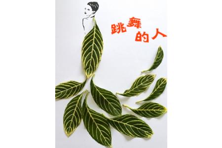树叶贴画作品:记一次植物生长实验