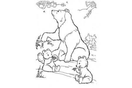 熊妈妈照顾两只小熊