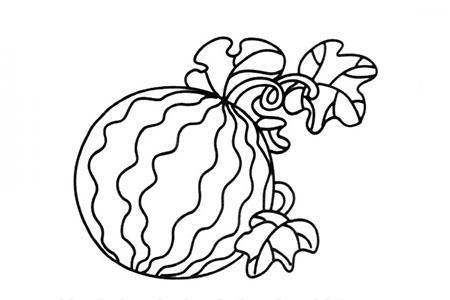 刚摘的西瓜