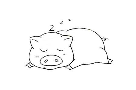 小动物的基本画法 猪的简笔画教程