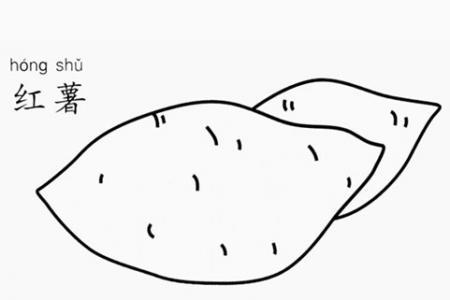红薯怎么画