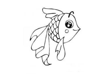 可爱的小金鱼简笔画图片