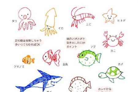 小清新海洋生物手帐简笔画素材