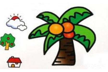 彩色椰子树简笔画