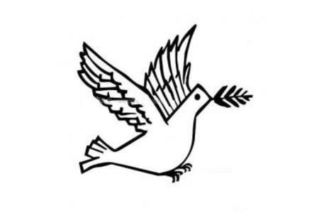 创意和平鸽简笔画