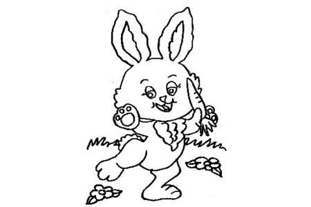小白兔吃胡萝卜