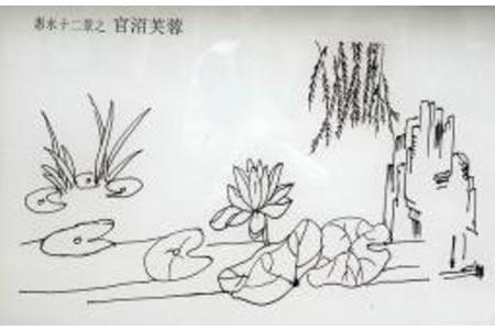 荷塘柳树简笔画