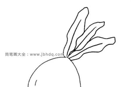 简单三步画出水灵灵的萝卜