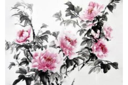 国画牡丹有关春天的水墨画图片展示