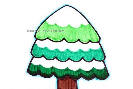 冬天里的松树