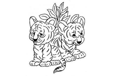 老虎简笔画 两只老虎宝宝简笔画图片