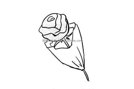 情人节礼物玫瑰花