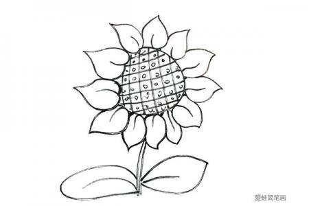 八步画向日葵的简笔画