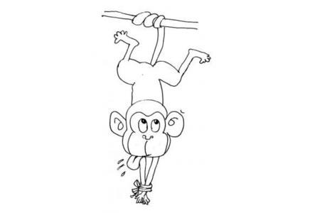 被捆住的猴子简笔画