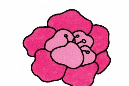 牡丹花的画法
