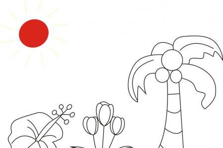 椰子树 郁金香简笔画