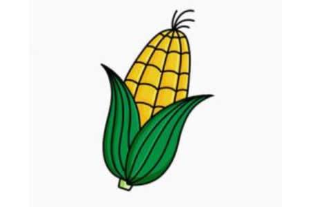 简单的玉米简笔画画法