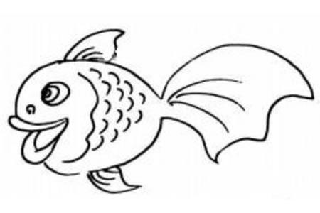 开心的金鱼