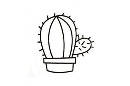 仙人球盆栽简笔画
