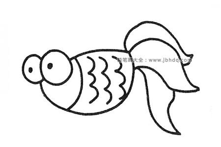 一组漂亮的金鱼简笔画图片