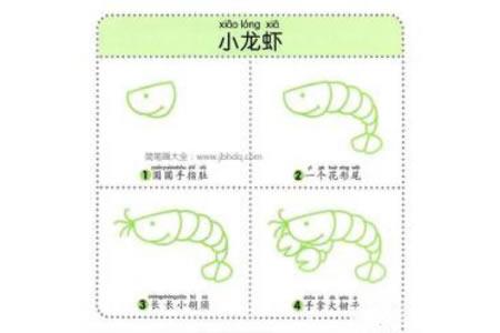幼儿动物简笔画教程之小龙虾