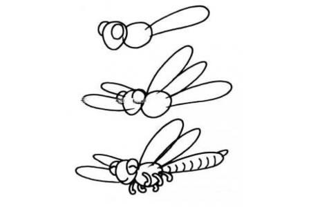 蜻蜓的画法