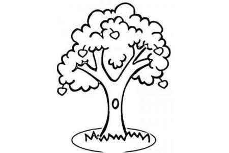 简画苹果树