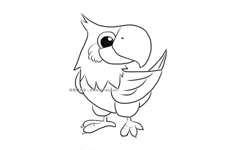 漂亮的鹦鹉简笔画