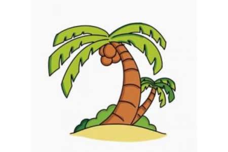 椰子树简笔画画法