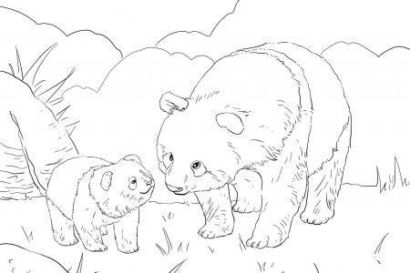 熊猫妈妈带着可爱的宝宝