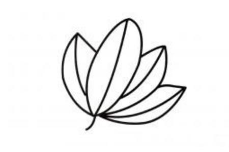 漂亮的树叶简笔画