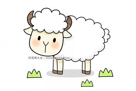 可爱绵羊简笔画步骤图解教程
