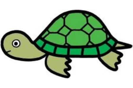 动物简笔画彩色乌龟 兔子和乌龟简笔画