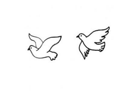 成双的和平鸽简笔画
