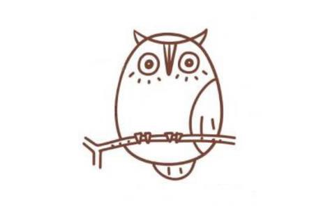 猫头鹰简笔画教程