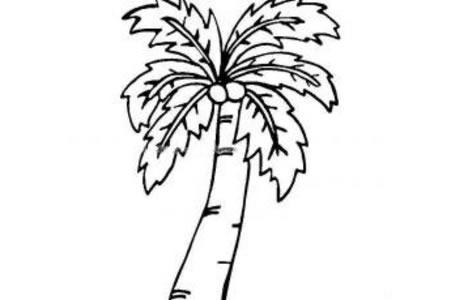 椰子成熟了