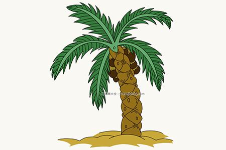 沙滩上的棕榈树