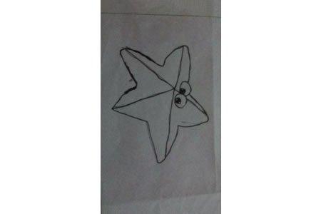 眨眼睛的海星