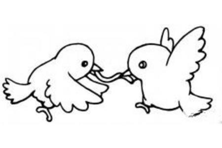 两只小鸟抢食