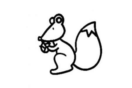 幼儿园画松鼠的简笔画