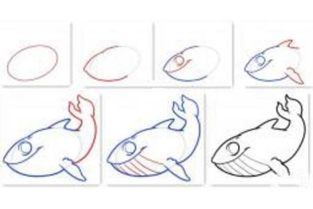 鲸鱼的画法