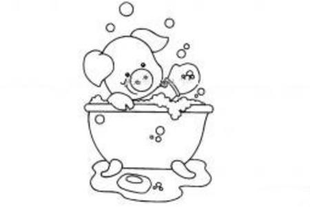 爱洗澡的小猪