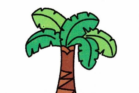 芭蕉树的画法