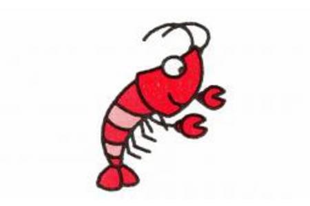 简笔画龙虾的画法