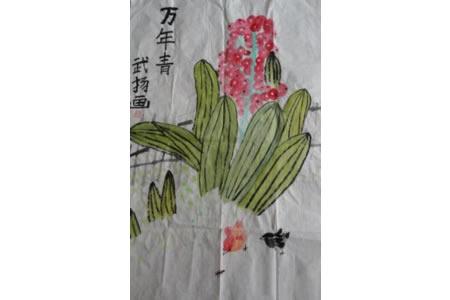 国画植物作品之写意万年青