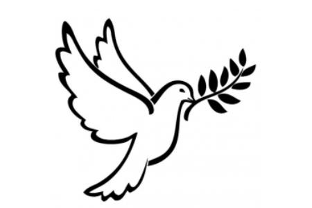 漂亮的和平鸽与橄榄枝简笔画